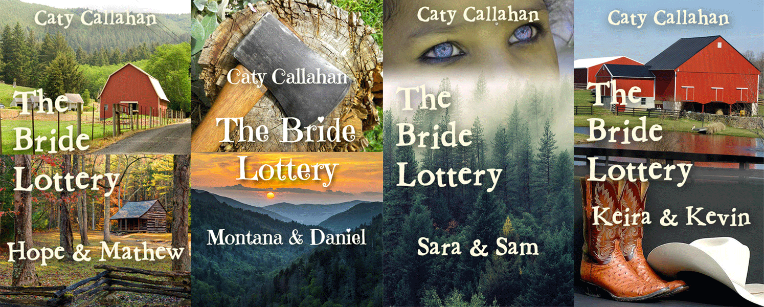 The Original Bride Lottery Series (first four novels) published more than a year before Kristin Holt copied them
