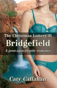 Christmas Lottery 1 Bridgefield | Caty Callahan